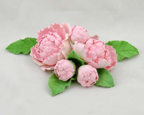 5 Single peony and leaves pink